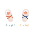 it s a boy or girl card new born swaddled babies vector image