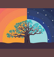 night and sunset big tree vector image vector image