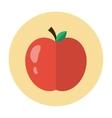 Apple icon flat vector image