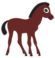 The foal vector image