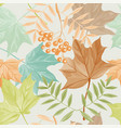 autumn leaves and rowan pattern vector image