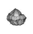 big stone dotwork vector image