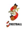 logo for a basketball team vector image vector image