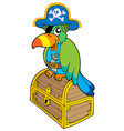 pirate parrot sitting on chest vector image vector image