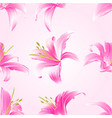 seamless texture lily pink flowers vector image vector image
