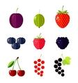 Berries Flat vector image