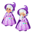 an elderly woman fairy in a purple suit and hat is vector image