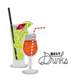 best drinks tropical cocktail vector image