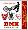 bmx t-shirt graphics extreme bike street style vector image vector image