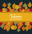 colorful autumn leaves on a old paper back vector image vector image