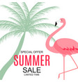 summer sale concept with colorful cartoon pink vector image vector image