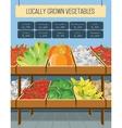 Supermarket shelves of vegetables vector image vector image