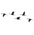 Crane flock vector image