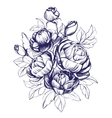 floral blooming rose branch vector image
