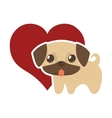 dog cute tongue out red heart vector image