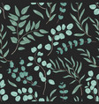 eucalyptus leaves hand drawn seamless vector image