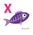 Letter X X-ray fish Zoo alphabet English abc with vector image