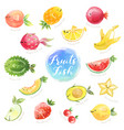 cute fruits mix fish characters hand drawn doodle vector image