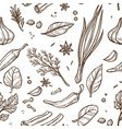 herbs and spices sketch seamless pattern cooking vector image vector image