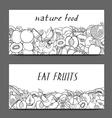 Set of fruit vector image