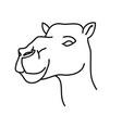 animal camel icon design clip art line icon vector image