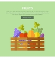 Fruits Web Banner in Flat Design vector image vector image