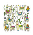 cute lamas collection for your design vector image vector image