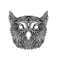 owl head in floral style design element vector image