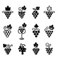 set grapes logos and icons vector image vector image