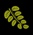 Simple green leaf of deciduous tree stylized vector image vector image