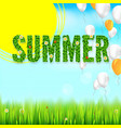 the inscription of summer green leaves of spring vector image