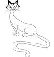 Sitting beautiful cat vector image