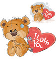 a loving brown teddy bear vector image vector image