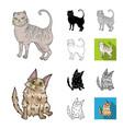 breeds of cats cartoonblackflatmonochrome vector image