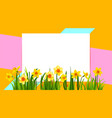 floral holiday banner with daffodils vector image vector image