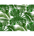 jungle lush green leaves of tropical palm trees vector image vector image