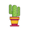 cactus flat icon vector image