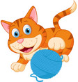 cute cat playing with a ball vector image vector image