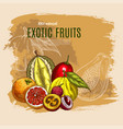 exotic durian mango papaya fruits poster vector image vector image