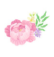 large purple peony flower arranged with garden vector image vector image