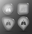 Lungs Glass buttons vector image