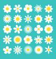 camomile big set white daisy chamomile icon cute vector image vector image