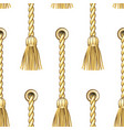 golden vertical straped ropes with brushes metal vector image vector image