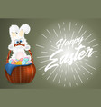 happy easter greeting card with white fluffy bunny vector image vector image