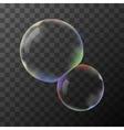 Transparent soap bubbles vector image