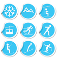 winter sport icons9 vector image