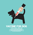 Dogs Vaccine To Prevent Illness vector image