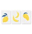 abstract minimal tropical yellow fruits set vector image