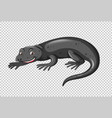 black lizard on transparent background vector image