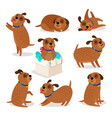 brown funny cartoon puppies vector image vector image